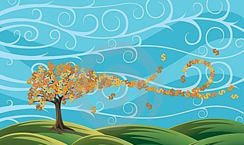 Blossoming into Abundance